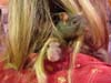 rats_in_hair